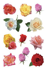 HERMA Stickers DECOR 'roses'