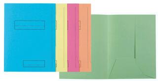 EXACOMPTA Chemises SUPER 250 imprimées, A4, vert clair