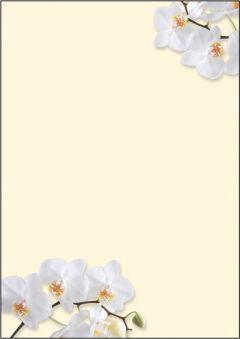 sigel Papier à motif, A4, 90 g/m2, motif 'Blue Emotion'