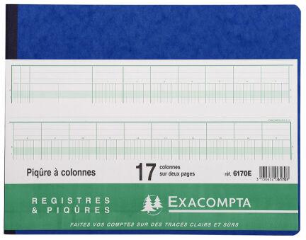 EXACOMPTA Piqûre à colonnes, 30 colonnes, 31 lignes