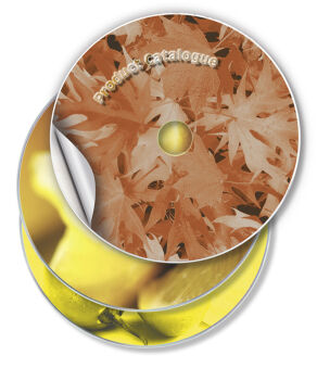 AVERY Etiquette CD, diamètre: 117 mm, blanc