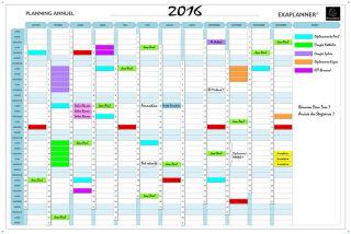 EXACOMPTA Planning annuel Exaplanner, (L)900 x (H)590 mm