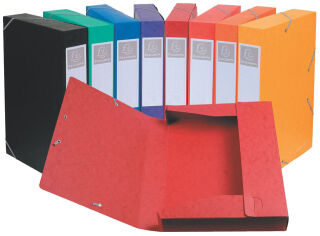 EXACOMPTA Boîte de classement Cartobox, A4, 50 mm, assorti