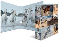 HERMA Classeurs à motifs 'Animals', format A4, chevaux